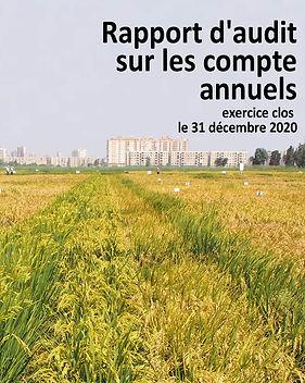 Audited Financial Statements 2020-Fr.jpg
