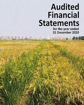 Audited Financial Statements 2020-eng.jpg