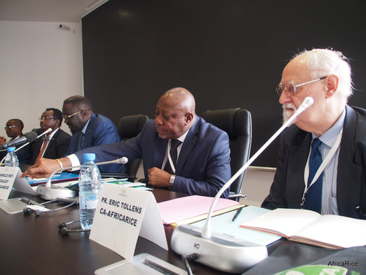 Highlights from High-Level Ministerial Conference on Rice Development in SSA