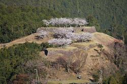 赤木城跡(熊野市紀和町)