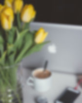 tulips-1208206_1920.jpg