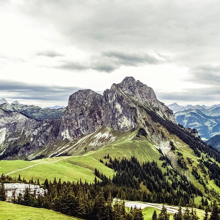 Booze School - Spirits of the Alps