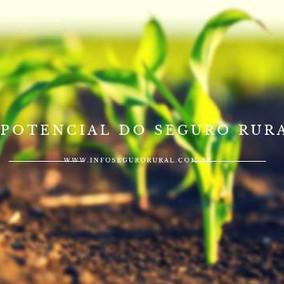 Seguradora destaca o potencial do Seguro Rural