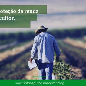 Cresce apoio à proteção da renda do agricultor, comemora Xico Graziano