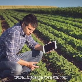 O mercado de seguros agrícolas