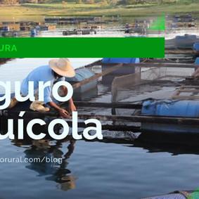 Projeto Monitor do Seguro Rural: Incentivo ao Seguro Aquícola