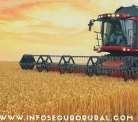 Consórcio e o setor de Máquinas Agrícolas