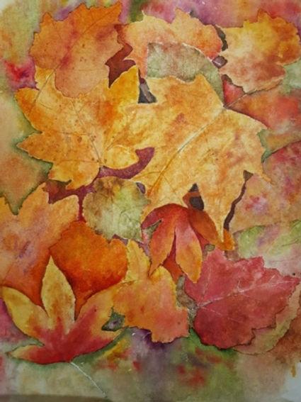 Autumnal hues.jpg