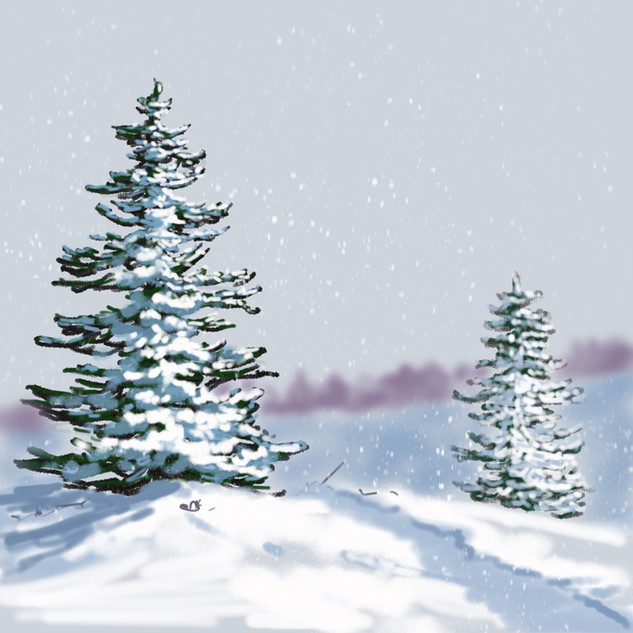 Winter Sun. Jane Masters