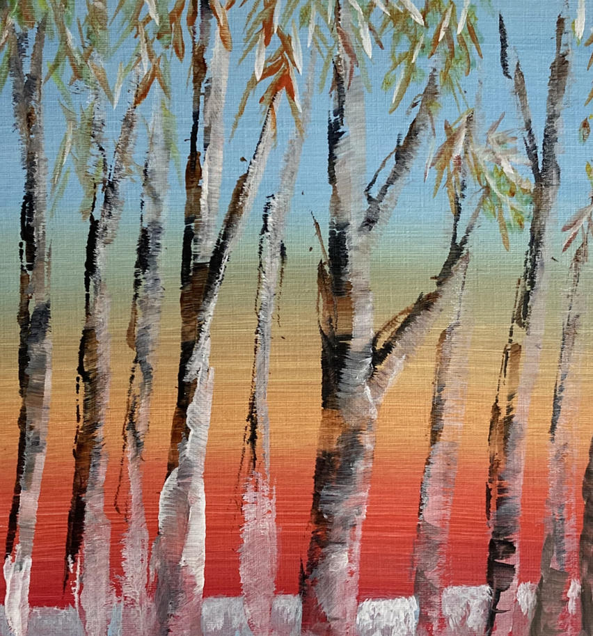 Frosted Birches at Dawn