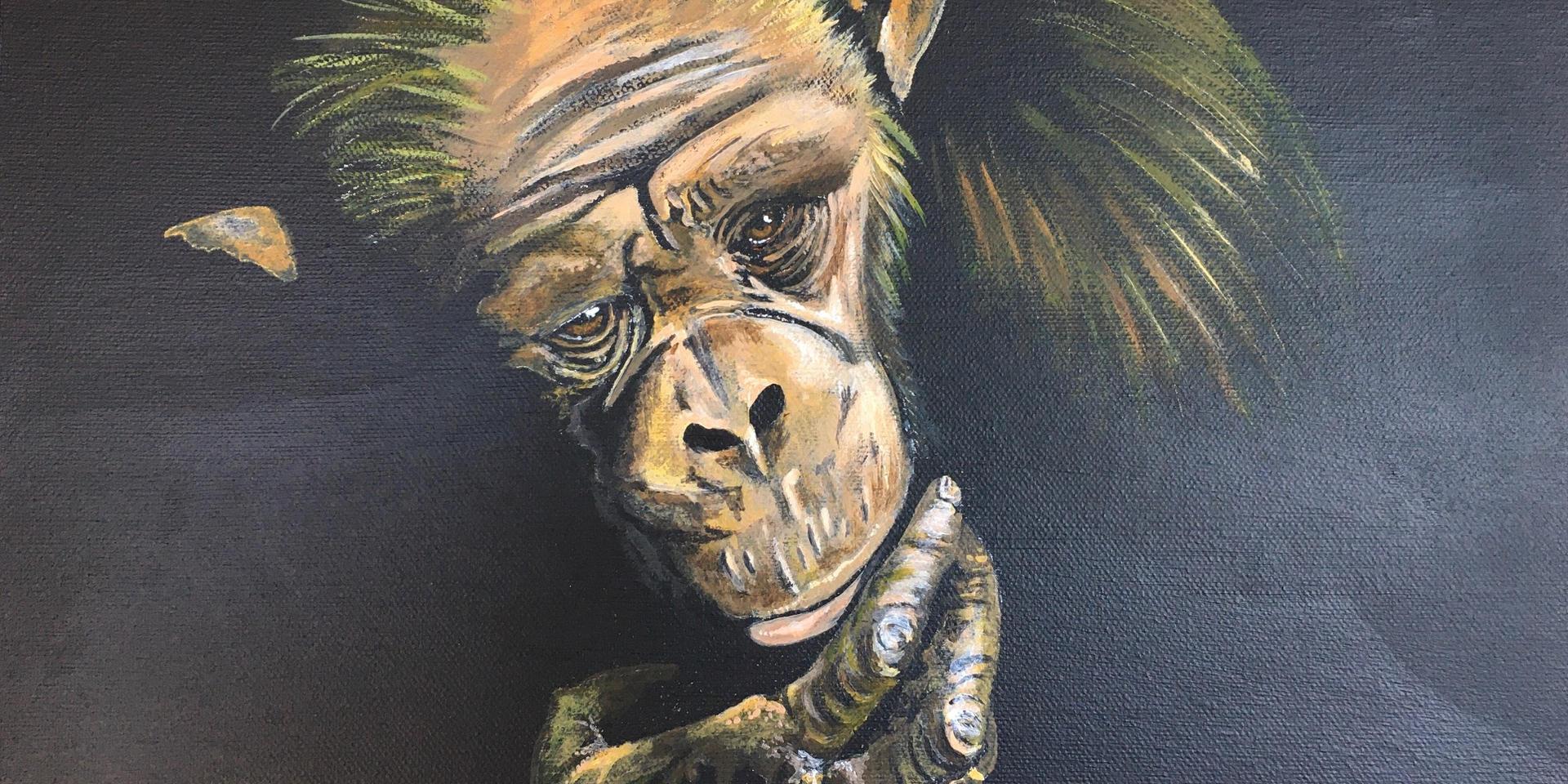 Portrait Wildlife