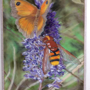 """All the """"B's"""" Butterfly Budleia Bee. Pastel"""