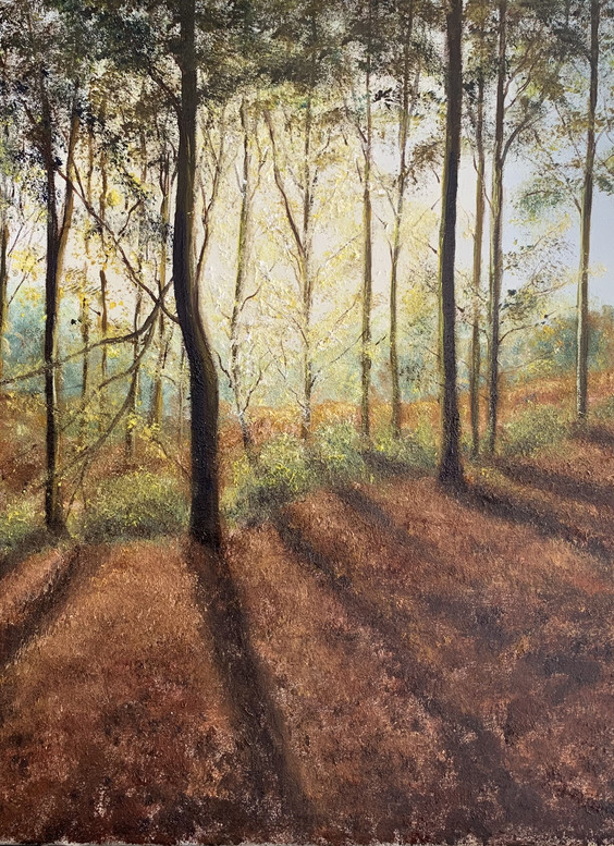 Friston Forest daily renewal