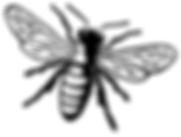 Logo Biene.png