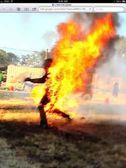 Live Stunt Performances