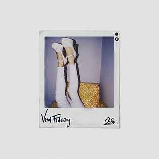 Vital Fidelity Album Art.JPG