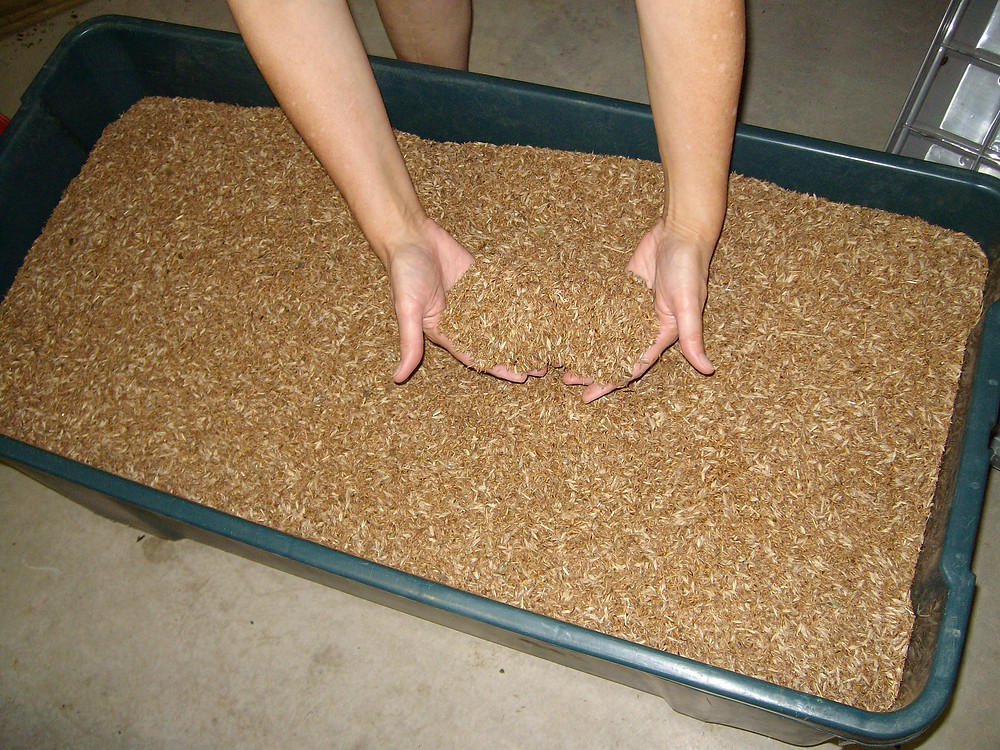 Mixing up similar sized seed for placement in a seed box.