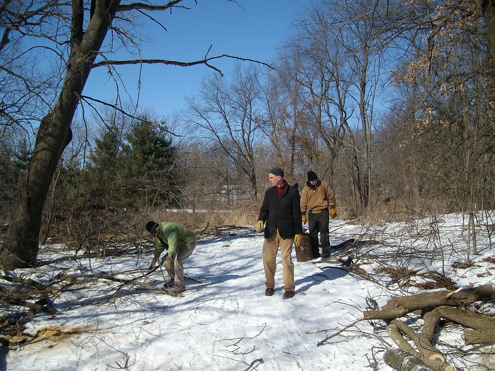 Oak woodland restoration