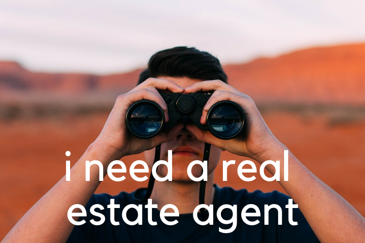 looking for a real estate agent