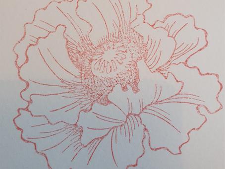 Pretty poppy watercoloured