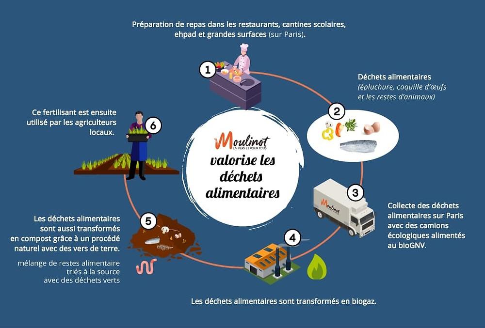 Infographie présentant les différentes étapes du traitement des biodéchets chez Moulinot : collecte - transformation - compostage et méthanisation