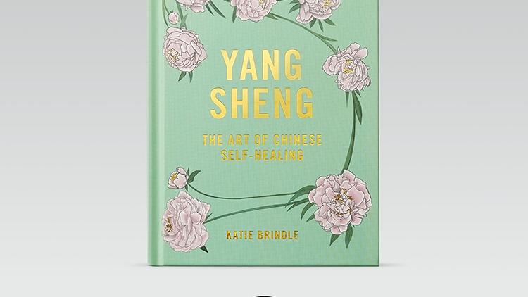 Yang Sheng: The Art of Chinese Self-Healing Book