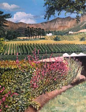 Franzchoek vineyards, South Africa - Oil on canvas