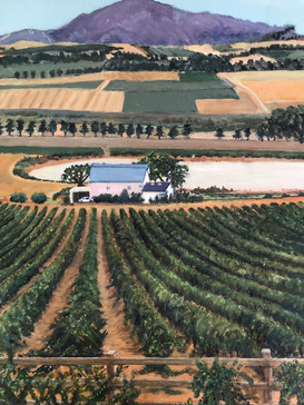 Franzchoek vineyards, South Africa - Oil on canvas