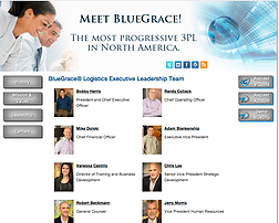 BlueGrace  Logistics website