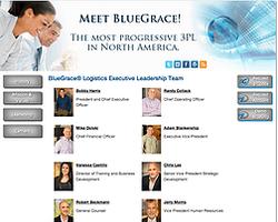 BlueGrace  Logistics website