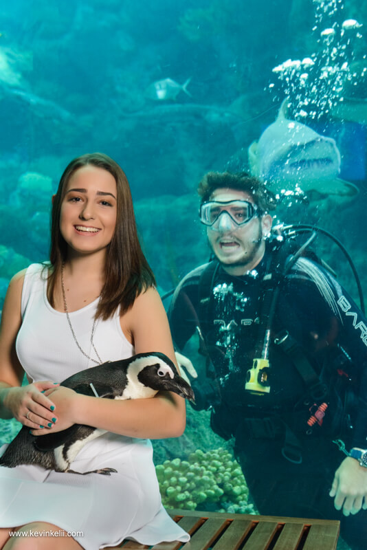 Graduation Photos at the Florida Aquarium Image 3