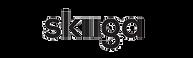 Skiiga logo.png