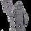 Thumbnail: Roman Signifer
