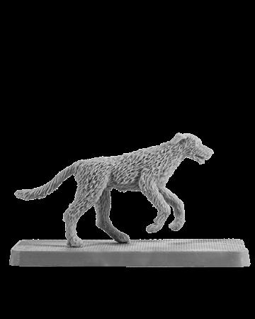 Irish Wolfhound #4