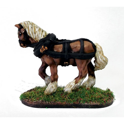 Heavy Draft Horse A