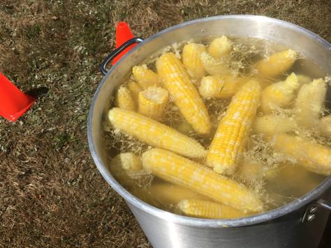 Épluchette de blé d'inde, le 27 août.