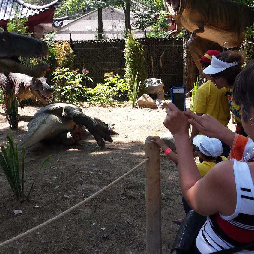 zoo 20170816_130328