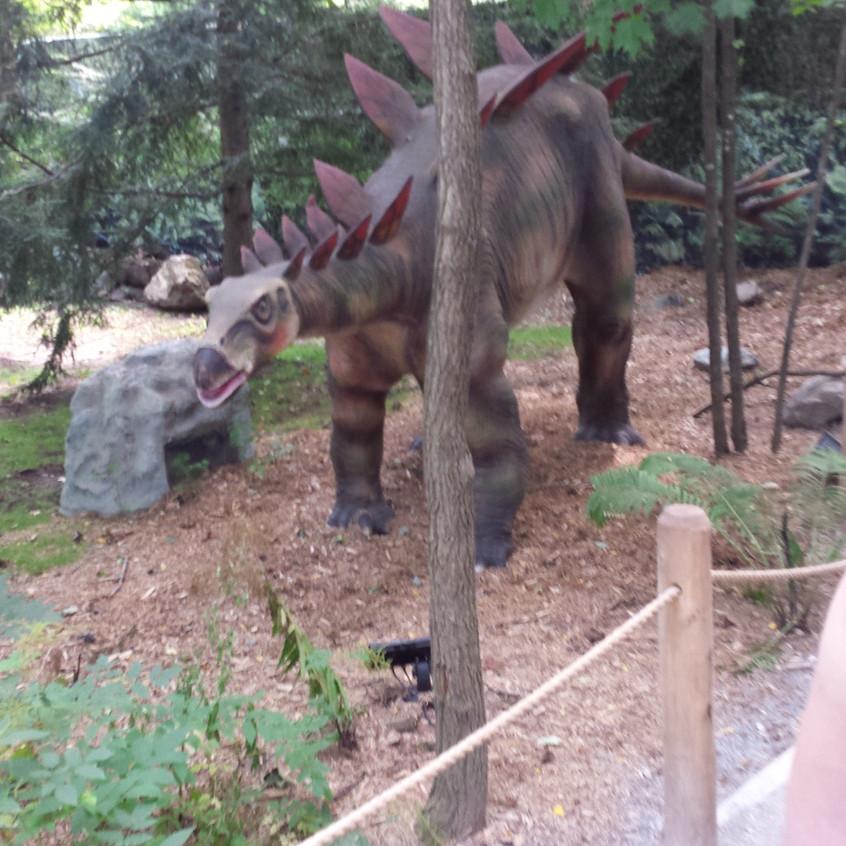 zoo 20170816_130059