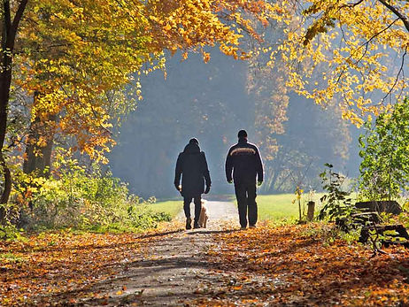 Walk-and-Talk-dog-walking-Simply-Counsel