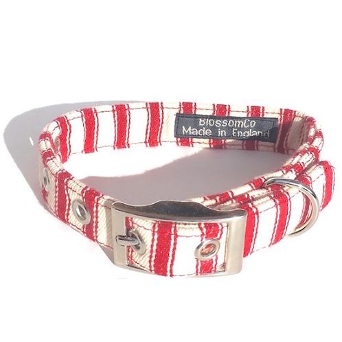 BlossomCo Dog Collar - Seymour