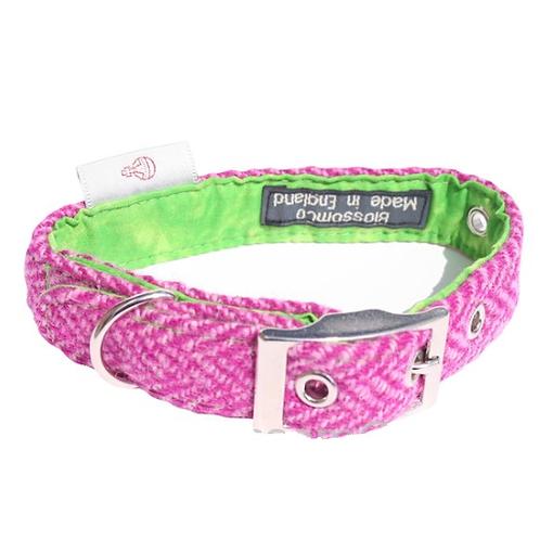 BlossomCo Harris Tweed Dog Collar Benecular stylish dog