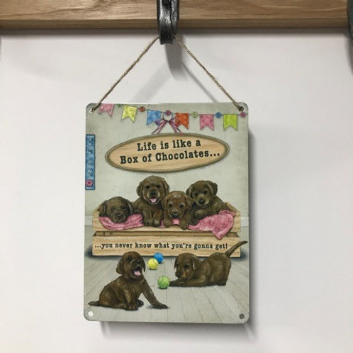 Dog Metal Sign Life is like a box of chocolates Quirky Retro Labrador Gift for Dog Lovers