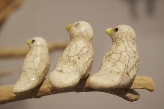 Concerto pour oiseaux