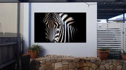 garden wall mural art zebra