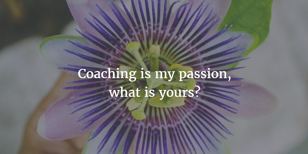 Passionflower - www.expatcoachingcompany.nl