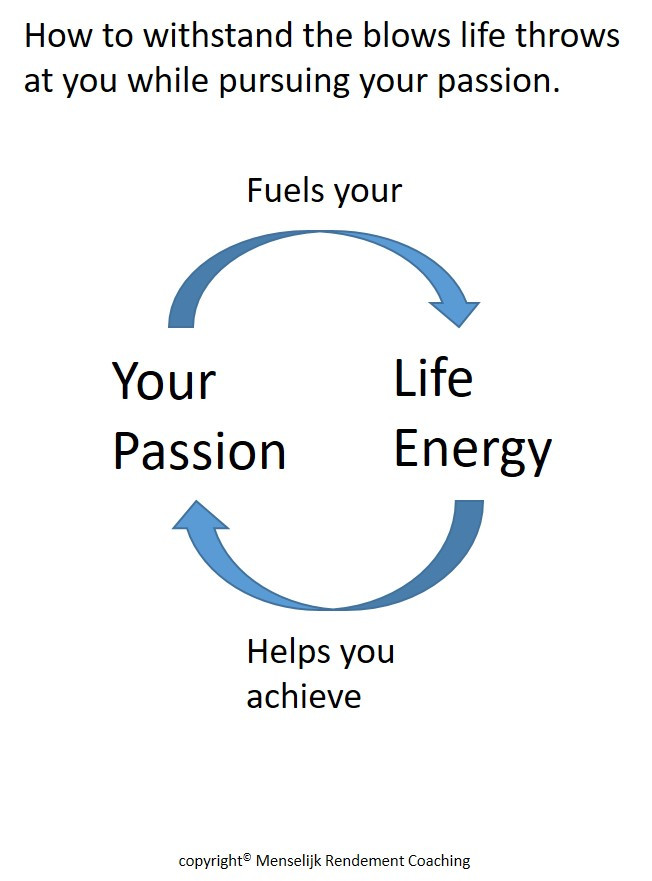 Header blog | menselijk-rendement.nl | Circle of Life Energy and Passion