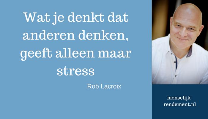 Afbeelding blogartikel op menselijk-rendement.nl over stress