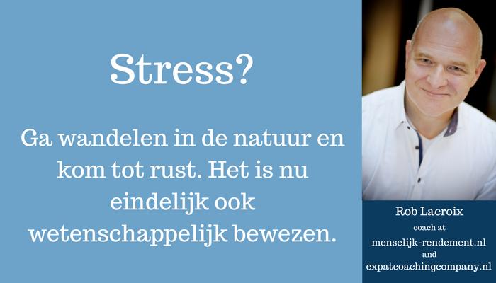 Header blog | menselijk-rendement.nl | Stress
