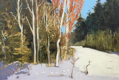 ' Polish Winter Landscape'