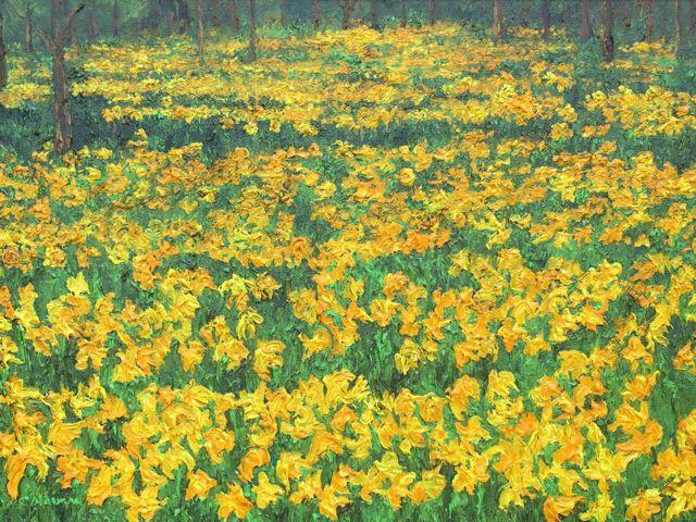 'Field of Daffodils'